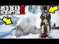 SECRET LEGENDARY BISON & ITEM YOU DONT KNOW ABOUT in Red Dead Redemption 2!