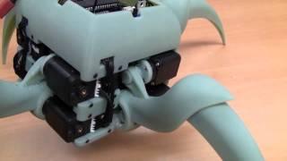 Download Aracna: An Open-Source Quadruped Robotic Platform Video
