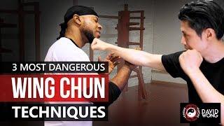 Download 3 Most Dangerous Wing Chun Techniques Video