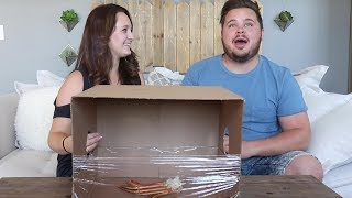 Download WHAT'S IN THE BOX?! Video