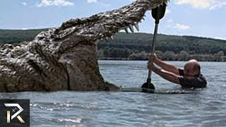 Download Prehistoric Creatures That Still Exist Today Video