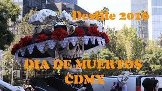 Download Desfile de dia de muertos EN CDMX. Asi lo vivimos Video