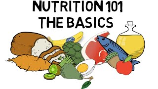 Download Basic Nutrition and Macro - Nutrients Video Animation by Train With Kane Video