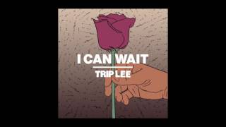 Download Trip Lee - I Can Wait Video