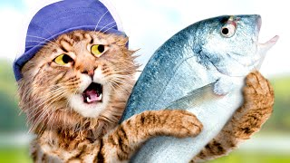 Download CATch The BIGGEST Fish! Video