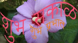 Marathi Suvichar Good Thought Whatsapp Message Good Morning
