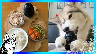 Download DIY DOG TREATS CHICKEN and RICE KONG | Snow Dogs Snacks 68 Video