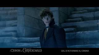 Download Animali Fantastici: I Crimini di Grindelwald - SIDE 15″ Video
