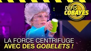 Download La force centrifuge avec des goblets ! - Défis Cobayes - France 4 Video