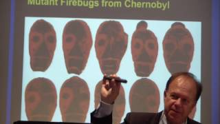 Download Dr. Timothy Mousseau speaks on consequences of Chernobyl and Fukushima Video