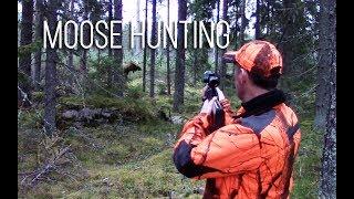 Download NH: Hirvijahti | Moose hunting in Finland | 2017 Video