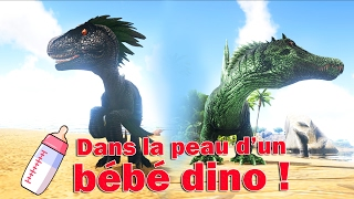 Download DANS LA PEAU D'UN BEBE DINO ! (6) / ARK Survival Evolved [FR] Video