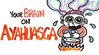 Download Your Brain On Ayahuasca: The Hallucinogenic Drug Video