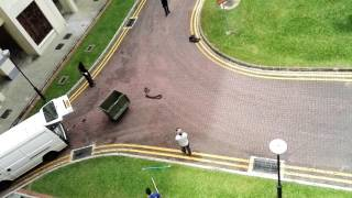Download Snake in Singapore Jurong West st 75 Video