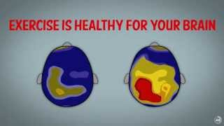 Download Resiliency in 54 Seconds: How Exercise Affects the Brain Video