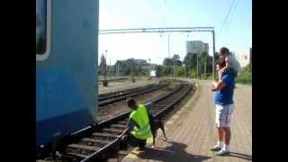 Download 016 IR1631-RE8806 Cuplare locomotiva electrica (22 Iul 2012) Video