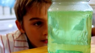Download How to make a tornado in a jar science trick Video