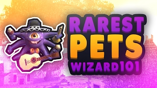 Wizard101: How To Make Or Copy The Perfect Pet (2017) (Tutorial