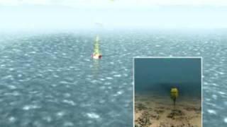 Download Tsunami Detection System Video