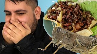 Download Latinos Try Mexican Chapulines Video