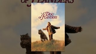 Download A Dog of Flanders Video