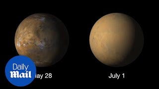 Download Large dust 'Storm Chasers' on Mars envelop the entire planet - Daily Mail Video