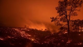 Download California's environmental policies have harmed our forests: Rep. McClintock Video