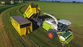 Download Claas Jaguar 'Doggy Style' | Grasdrogerij Hartog | Krone Big M 420 & ROC RT 1000 Video
