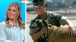 Download Real-life Marine fought the military to keep her hero dog Video