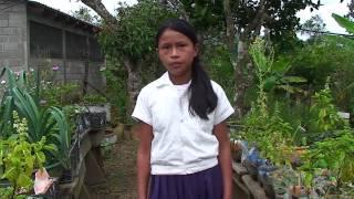 Download Modelo de Compras Públicas Agricultura Familiar Campesina para Programas de Alimentación Escolar Video