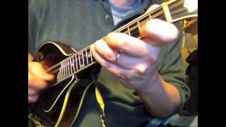 Download Arkansas Traveler Crosspicked: Jim Richter, mandolin Video