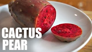 Download CACTUS PEAR | Prickly Pear Taste Test - FRUITY FRUITS Video