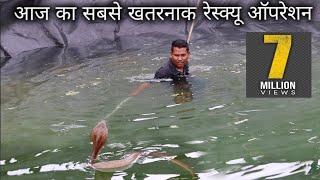 Download खेत तालाब में गिरे 2 सांप, आज का सबसे खतरनाक रेस्क्यू ऑपरेशन | Rescue cobra snake from Ahmednagar Video