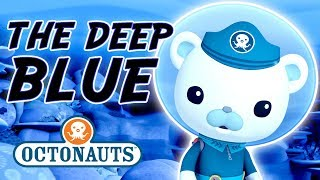 Download Octonauts - The Deep Blue | Cartoons for Kids | Underwater Sea Education Video