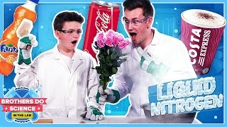 Download LIQUID NITROGEN VS DRINKS | Brothers Do Science: In The Lab Video