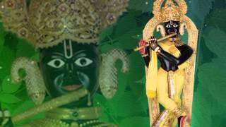Download Swaminarayan Non Stop Raas Kirtan - Rasiyo Raas Rame Ho Raj Video