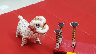 Download 2017 18th Malaysian National Lion Dance Championship 柔佛麻坡关圣宫龙狮团 Score:9.19 Video