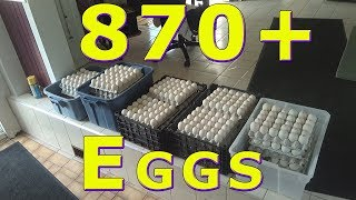 Download Food Bank Egg Donation August 14th, 2018 Video
