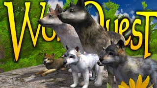 Download Wolf Quest - WOLF SIMULATOR, BREED, HUNT, FORM PACKS (Gameplay) Video
