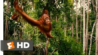 Download Born to Be Wild Official Trailer #1 - (2011) HD Video