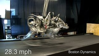 Download Cheetah Robot runs 28.3 mph; a bit faster than Usain Bolt Video