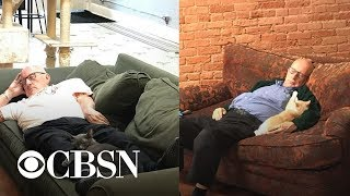 Download 75-year-old man who naps with cats while volunteering goes viral Video