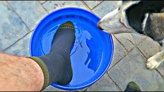 Download Waterproof Socks - Do They Work? Video