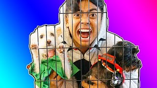 Download Escape The Dog Cage 4! Video