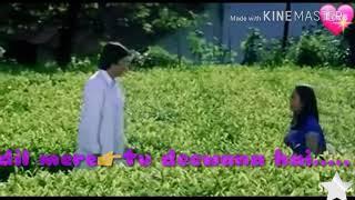 Download Dil mere tu deewana hai whatsapp status video Video