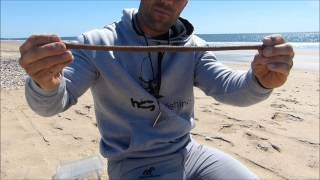 Download HUMBERTO GACIO TUTORIAL DE CEBOS / TITA TROCEADA Video