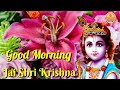 Download Good Morning video songs for whatsapp status download Video