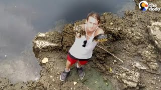 Download Guys Save Chained Turtles Who Almost Drowned   The Dodo Video