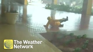 Download Watch wind take storm hunter right off her feet in Hurricane Michael - October 10, 2018 Video