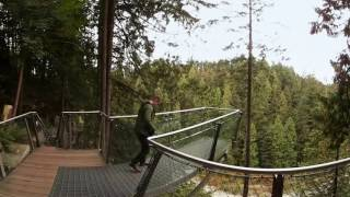 Download Up high at Capilano Suspension Bridge Park in 360° - Lonely Planet Video